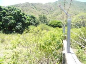 Terreno En Alquiler En Municipio Arismendi La Asuncion, Cocheima, Venezuela, VE RAH: 15-13554