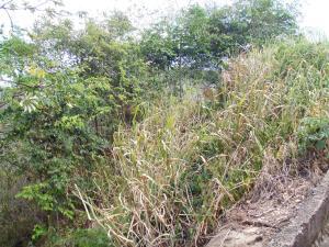 Terreno En Ventaen Caracas, Karimao Country, Venezuela, VE RAH: 15-14178