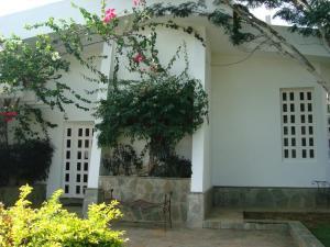 Casa En Venta En Valencia, Guataparo, Venezuela, VE RAH: 15-14341
