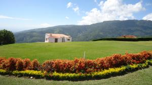 Terreno En Venta En Chivacoa, Bruzual, Venezuela, VE RAH: 15-15850