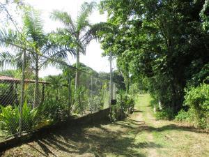 Terreno En Venta En Caucagua, Merecure, Venezuela, VE RAH: 15-16643