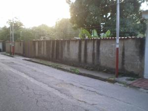 Terreno En Venta En Maracay, El Limon, Venezuela, VE RAH: 16-152