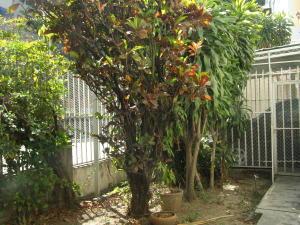 En Venta En Caracas - San Bernardino Código FLEX: 16-1763 No.13