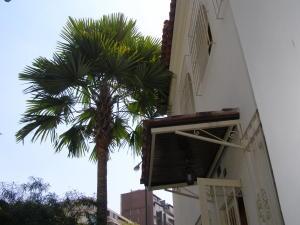 En Venta En Caracas - San Bernardino Código FLEX: 16-1763 No.14