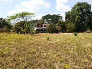 Terreno En Ventaen Municipio Bejuma, Bejuma, Venezuela, VE RAH: 16-2735