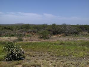 Terreno En Venta En Municipio Diaz San Juan, Los Bagres, Venezuela, VE RAH: 16-3909