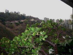Apartamento En Venta En Caracas - Manzanares Código FLEX: 16-4558 No.7