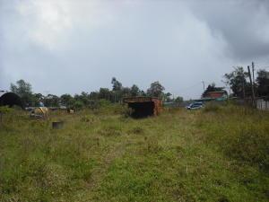 Terreno En Venta En El Junquito-Vargas, La Niebla, Venezuela, VE RAH: 16-4673