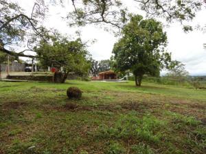 Terreno En Venta En Caucagua, Merecure, Venezuela, VE RAH: 16-5027