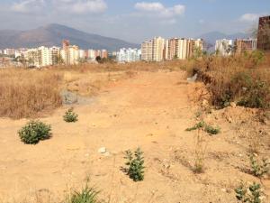 Terreno En Venta En Municipio Naguanagua, Maã±Ongo, Venezuela, VE RAH: 16-5260