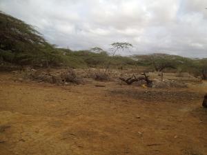 Terreno En Venta En Punto Fijo, Santa Elena, Venezuela, VE RAH: 16-5295