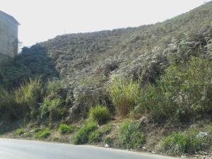Terreno En Venta En San Antonio De Los Altos, Las Minas, Venezuela, VE RAH: 16-13091