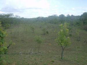 Terreno En Venta En Valencia, Sabana Del Medio, Venezuela, VE RAH: 16-5633