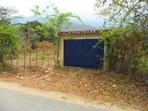 Terreno En Ventaen Municipio Bejuma, Canoabo, Venezuela, VE RAH: 16-5778