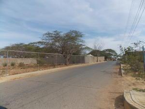 Terreno En Venta En Punto Fijo, Los Taques, Venezuela, VE RAH: 16-6737
