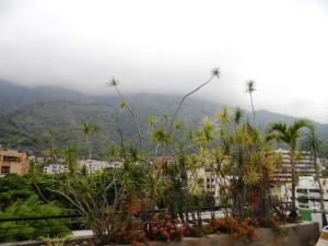 Apartamento En Venta En Caracas - Los Palos Grandes Código FLEX: 16-7272 No.2
