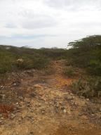 Terreno En Venta En Punto Fijo, Santa Elena, Venezuela, VE RAH: 16-7541