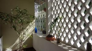 Apartamento En Venta En Caracas - Alta Florida Código FLEX: 16-8425 No.10