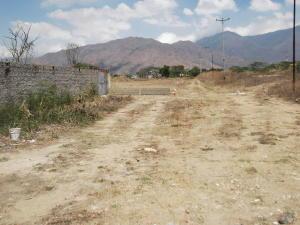 Terreno En Venta En Municipio San Diego, Pueblo De San Diego, Venezuela, VE RAH: 16-8524