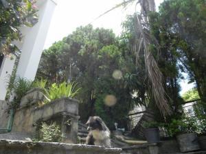 Casa En Venta En Caracas, Las Palmas, Venezuela, VE RAH: 16-8607