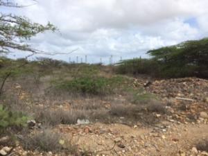 Terreno En Venta En Punto Fijo, Los Caciques, Venezuela, VE RAH: 16-8821