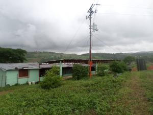 Terreno En Venta En Yaritagua, Municipio Peña, Venezuela, VE RAH: 16-9396