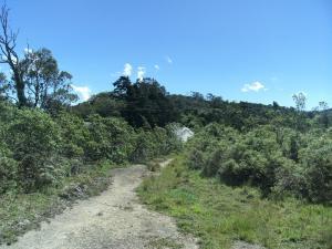 Terreno En Venta En Parroquia Carayaca, Almendron, Venezuela, VE RAH: 16-9832