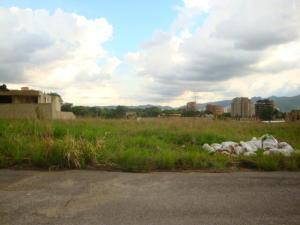 Terreno En Ventaen Municipio Naguanagua, Maã±Ongo, Venezuela, VE RAH: 16-10021