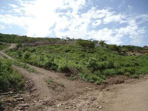 Terreno En Venta En Barquisimeto, El Cercado, Venezuela, VE RAH: 16-10177