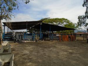 Terreno En Venta En Cabudare, El Paraiso, Venezuela, VE RAH: 16-10178
