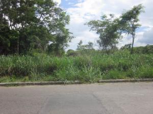 Terreno En Venta En Valencia, Colinas De Guataparo, Venezuela, VE RAH: 16-10362