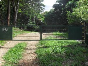 Terreno En Venta En Municipio Naguanagua, Trincheras, Venezuela, VE RAH: 16-10781