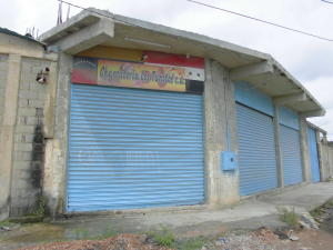 Galpon - Deposito En Venta En Barquisimeto, Parroquia Juan De Villegas, Venezuela, VE RAH: 16-10973
