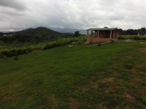 Terreno En Venta En Municipio Bejuma, Bejuma, Venezuela, VE RAH: 16-11008