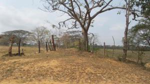 Terreno En Venta En Tucacas, Tucacas, Venezuela, VE RAH: 16-11451