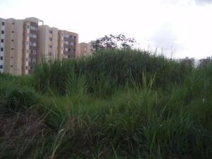 Terreno En Venta En Municipio Naguanagua, Maã±Ongo, Venezuela, VE RAH: 16-11468