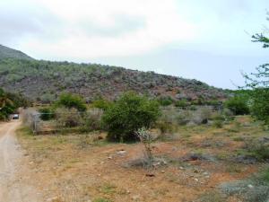 Terreno En Venta En Municipio Arismendi La Asuncion, Guacuco, Venezuela, VE RAH: 16-11488