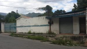 Terreno En Venta En Maracay, El Limon, Venezuela, VE RAH: 16-11495