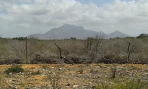 Terreno En Ventaen Paraguana, Cerro Norte, Venezuela, VE RAH: 16-11732