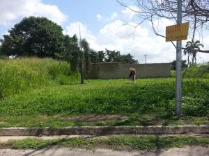 Terreno En Venta En Municipio Libertador, El Molino, Venezuela, VE RAH: 16-11995
