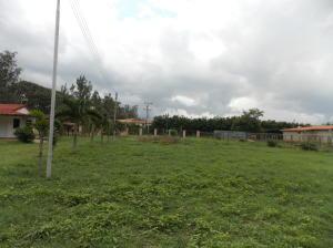Terreno En Venta En Municipio Montalban, Los Cerritos, Venezuela, VE RAH: 16-12027