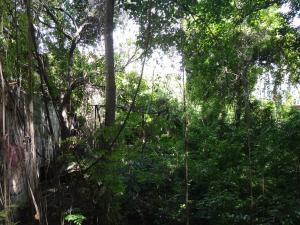 Terreno En Venta En Caracas - Prados del Este Código FLEX: 16-12558 No.1