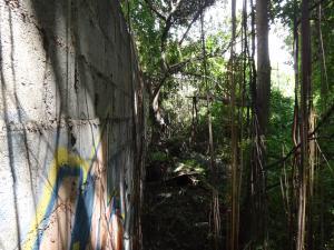 Terreno En Venta En Caracas - Prados del Este Código FLEX: 16-12558 No.3