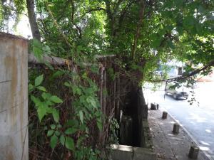 Terreno En Venta En Caracas - Prados del Este Código FLEX: 16-12558 No.4