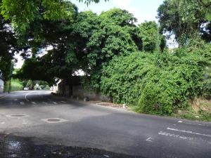 Terreno En Venta En Caracas - Prados del Este Código FLEX: 16-12558 No.6
