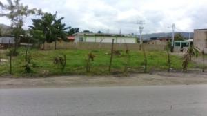 Terreno En Venta En Municipio Carlos Arvelo, Central Tacarigua, Venezuela, VE RAH: 16-12995