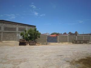 Galpon - Deposito En Alquiler En Punto Fijo, El Cardon, Venezuela, VE RAH: 16-12967