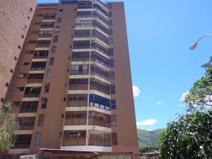 Apartamento En Venta En La Victoria, Nueva Victoria, Venezuela, VE RAH: 16-12994