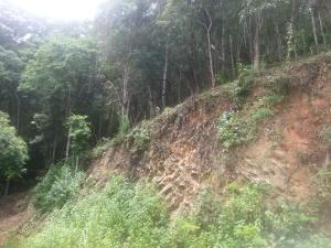 Terreno En Venta En Caracas, Karimao Country, Venezuela, VE RAH: 16-13388