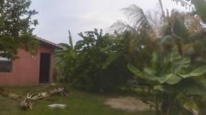 Terreno En Ventaen Higuerote, Higuerote, Venezuela, VE RAH: 16-13642